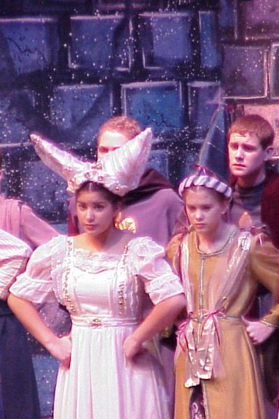 Once Upon A Mattress 2002 Opening5